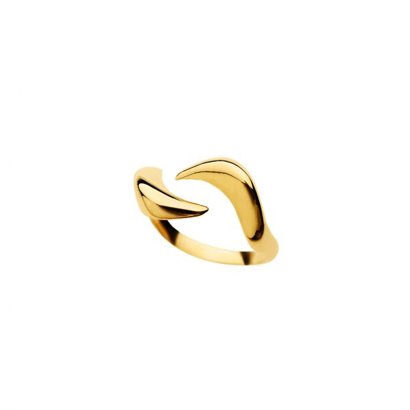 Cymata Ring - silver